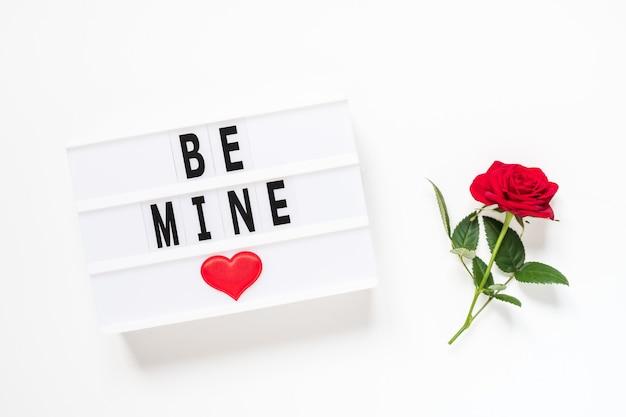 Koncepcja walentynki świeży czerwony kwiat róży i tekst bądź mój na lightbox na białym tle