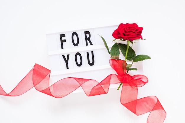 Koncepcja walentynki świeży czerwony kwiat róży z wstążką i tekstem dla ciebie na lightbox na białym tle