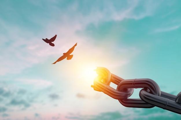 Koncepcja wolności: sylwetka latającego ptaka i zerwane łańcuchy na tle zachodu słońca