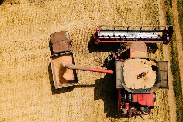 Koncepcja zbioru pszenicy widok z lotu ptaka łączy ładowanie ziarna pszenicy w przyczepie ciężarówki powyżej widoku