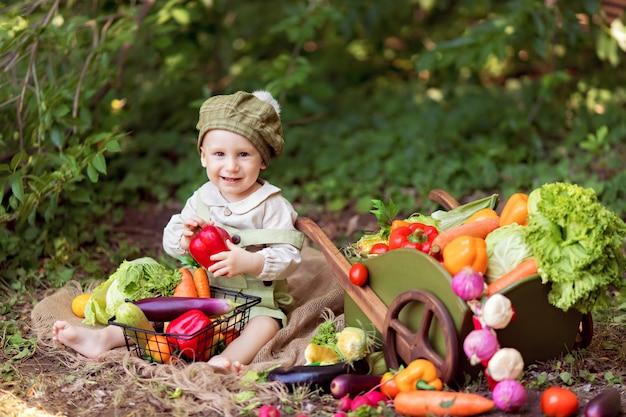 Koncepcja zdrowego odżywiania. chłopiec w naturze zbiera plony warzyw w wózku i przygotowuje sałatkę