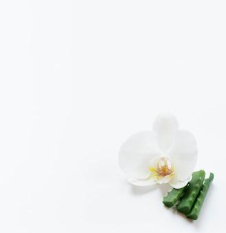 Koncepcja zdrowego spa i wysoki widok kwiatów