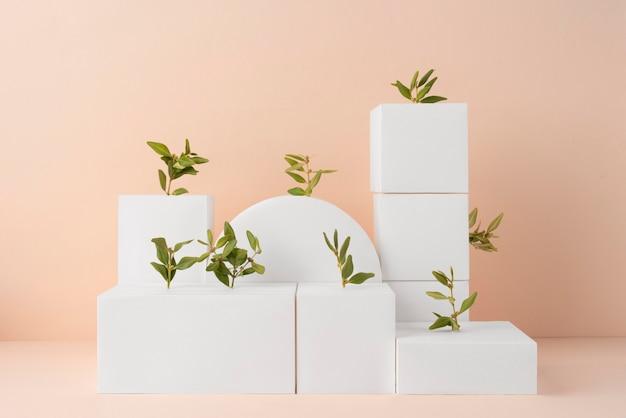 Koncepcja zrównoważonego rozwoju z roślinami wyrastającymi z form geometrycznych
