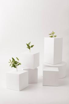 Koncepcja zrównoważonego rozwoju z roślinami wyrastającymi z pustych form geometrycznych