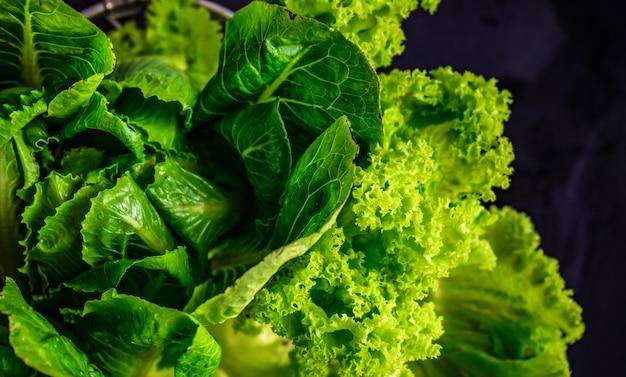 Koncepcja żywności ekologicznej