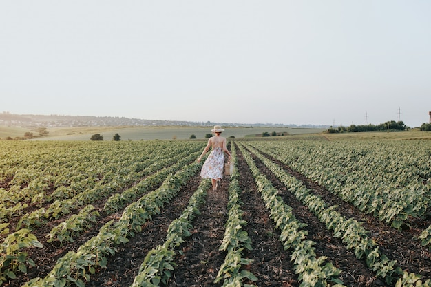 Konceptualna fotografia dla reklamy rolnictwa, dziewczyna w polu
