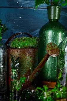 Konewka i butelka z zielonymi liśćmi, roślinami. prace ogrodowe.