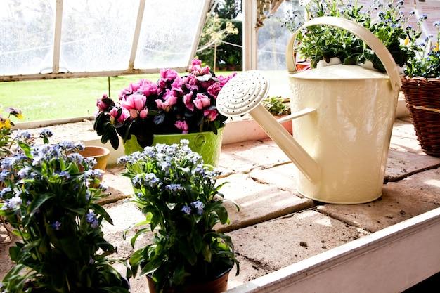 Konewki, koncepcja ogrodnictwa i hobby