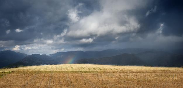Koniec tęczy, panorama krajobrazu z dramatycznym niebem. burzowe chmury nad bezlistną winnicą wczesną wiosną i maleńkim kawałkiem tęczy, z odległymi górami w tle