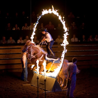 Koński doskakiwanie przez ogienia przy dixie panika w branson, missouri
