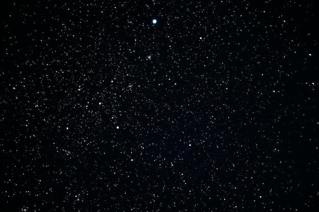 Konstelacja canis major. messier klastra gwiezdnego 41