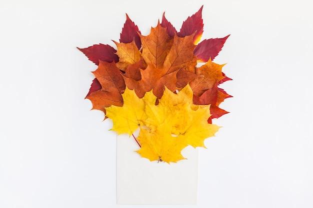 Koperta z suszonymi jasnymi jesiennymi liśćmi na białym stole