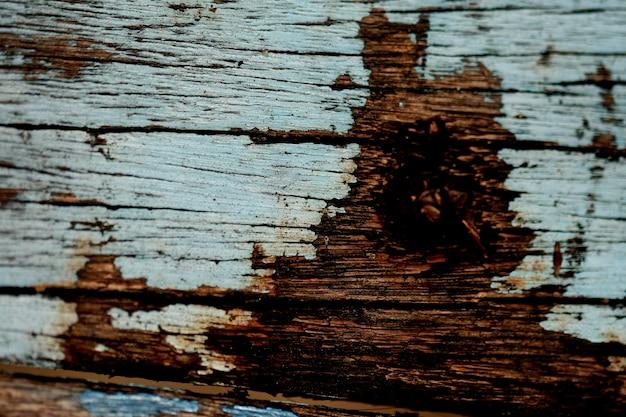 Kora tekstura tło