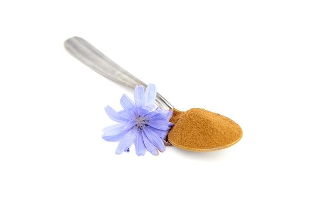 Korzeń cykorii w proszku łyżka i niebieski kwiat na białym tle