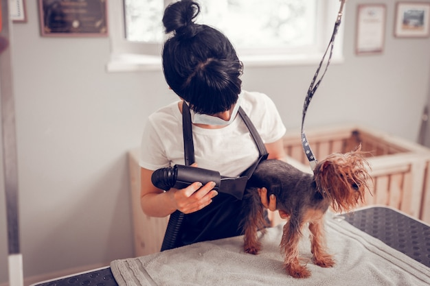 Korzystanie z suszarki. ciemnowłosa kobieta w mundurze korzystająca z suszarki po umyciu psa