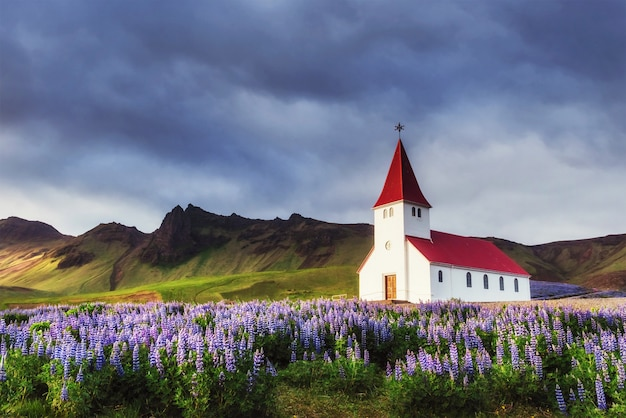 Kościół luterański w vik. islandia.