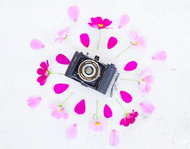Kosmos i kwiaty jaśminu ze sceną płaskiego świecenia kamery retro