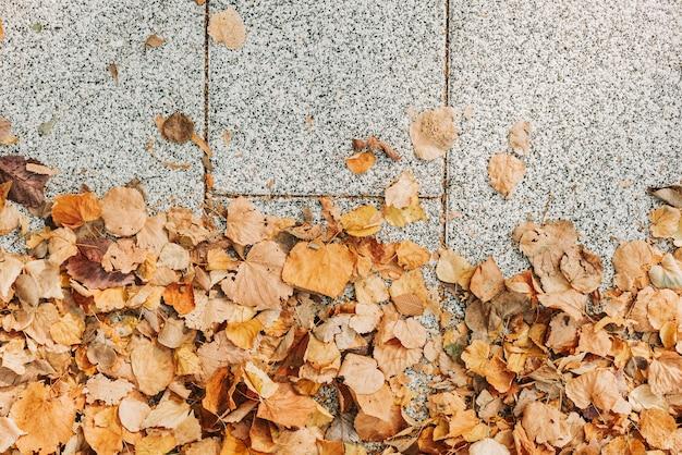 Kostka brukowa z żółtymi jesiennymi liśćmi