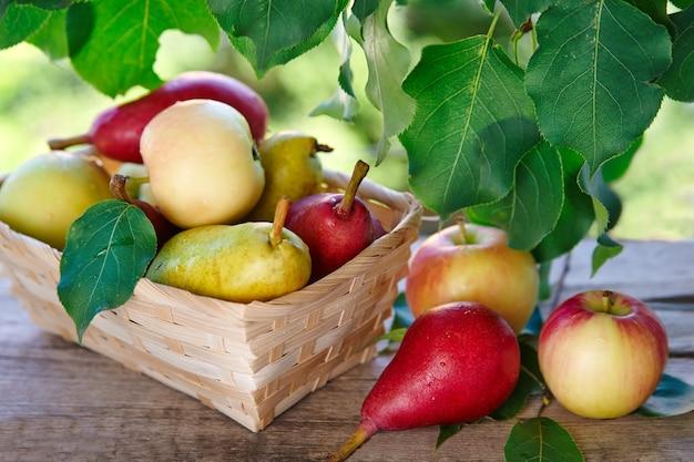 Kosz jabłek i gruszek na rustykalnym stole na tle przyrody