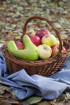 Kosz pełen owoców w trawie latem. w naturze świeże winogrona, gruszki i jabłka