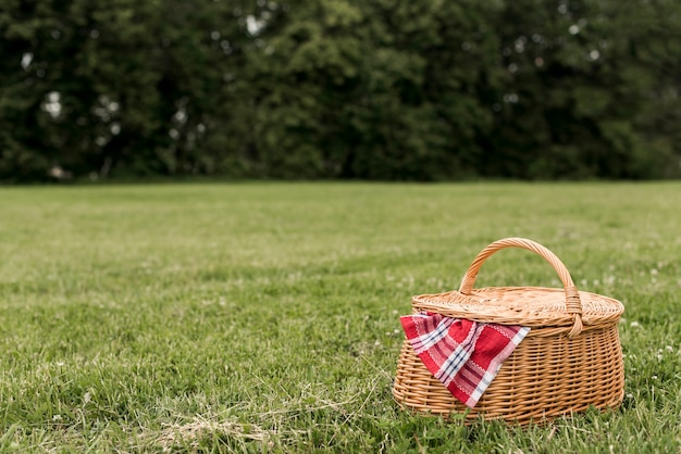 Kosz piknikowy na trawie w parku