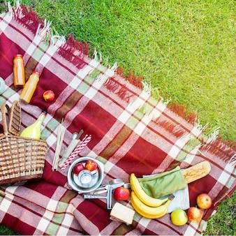 Kosz ustawienia żywności owoców kratkę plaid piknik trawy