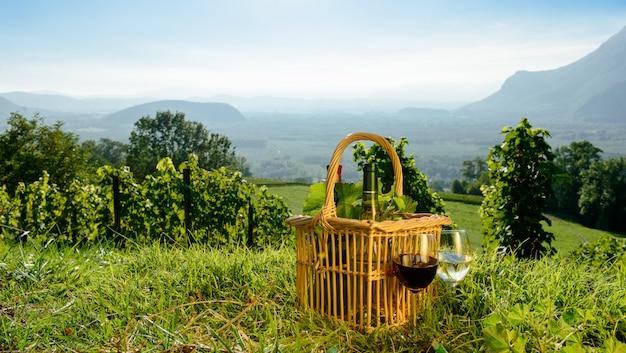 Kosz z butelkami wina w winnicach