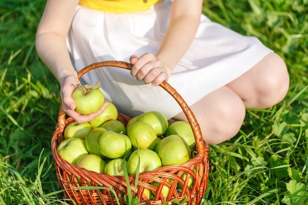 Kosz z jabłkami na trawie
