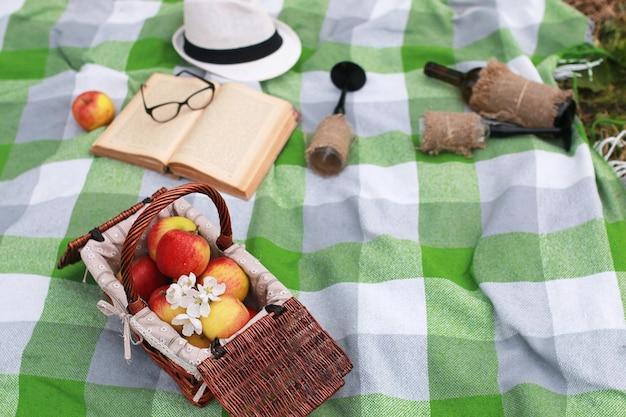 Kosz z jedzeniem na pikniku w kratę w wiosennym parku