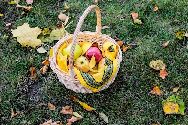 Kosz ze świeżymi słodkimi jabłkami na zielonej trawie. soczyste jabłka w koszu