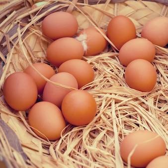 Koszyk ekologicznych jaj na rynku rolników wiejskich