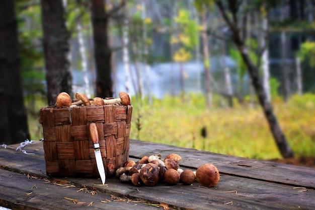 Koszykowy borowik ono rozrasta się nożowego drewnianego retro wieśniaka stylu rocznika drewno starego