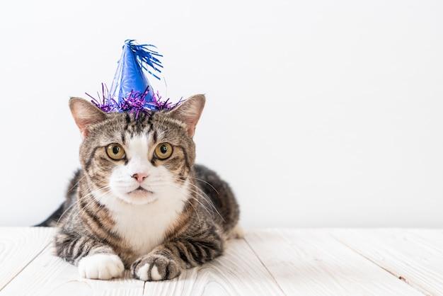 Kot z czapką imprezową
