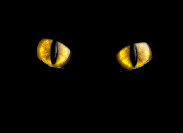 Koty oczy na białym tle na czarnym tle