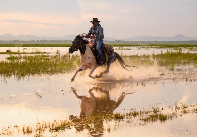 Kowboj na koniu. ranczo