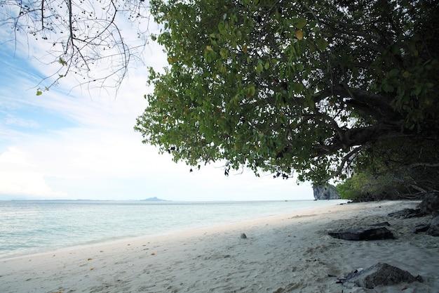 Krajobraz brzegu morza