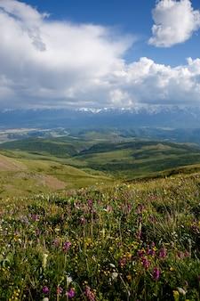 Krajobraz. chmury nad ośnieżonymi górami i wzgórzami, polami kwiatowymi