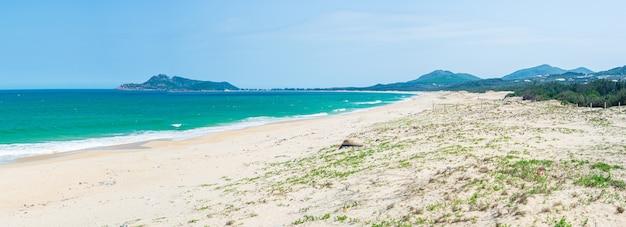 Krajobraz czystego oceanu i plaży z trawą