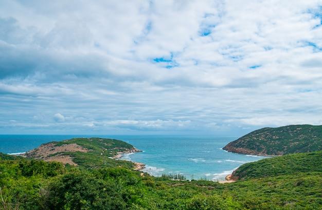 Krajobraz czystego oceanu i zielonych drzew