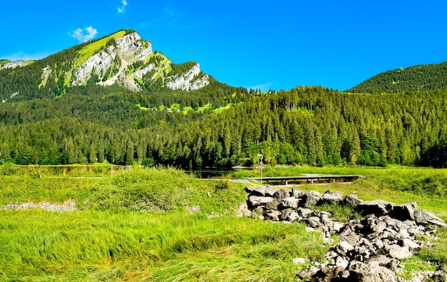 Krajobraz doliny obersee w kantonie glarus w szwajcarii