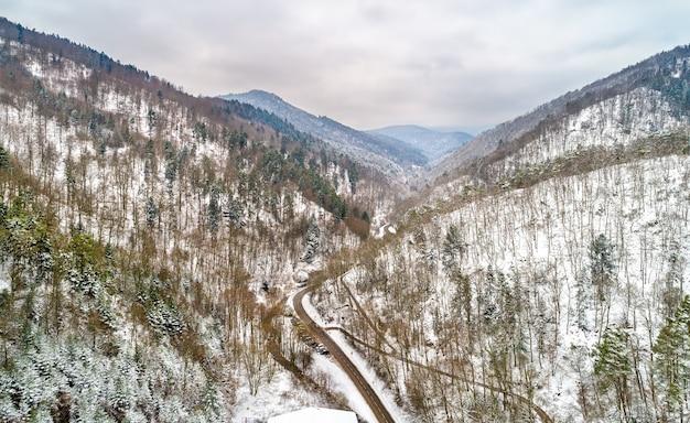 Krajobraz doliny strengbach w wogezach w pobliżu ribeauville. górny ren, francja