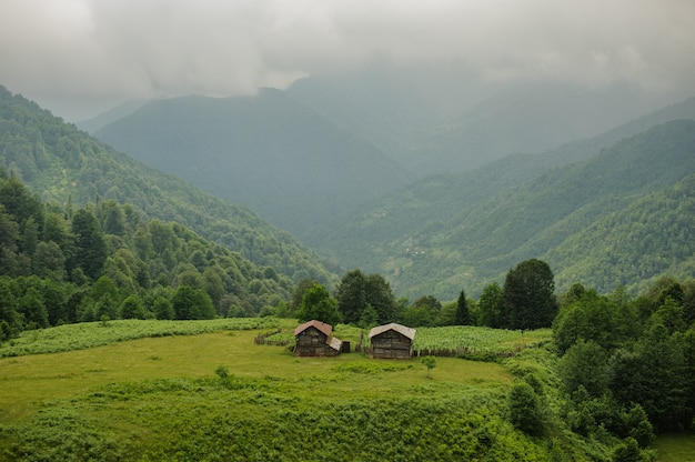 Krajobraz dwóch drewnianych domów stojących na zielonym polu z zielonymi górami z mgły