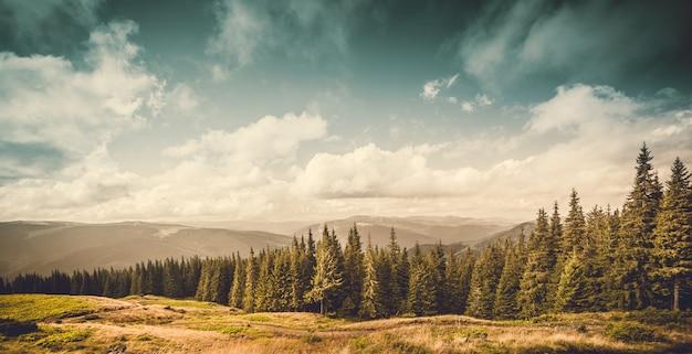 Krajobraz gór i zielonego lasu