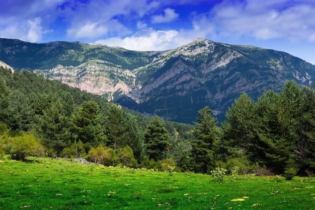 Krajobraz gór w letni dzień