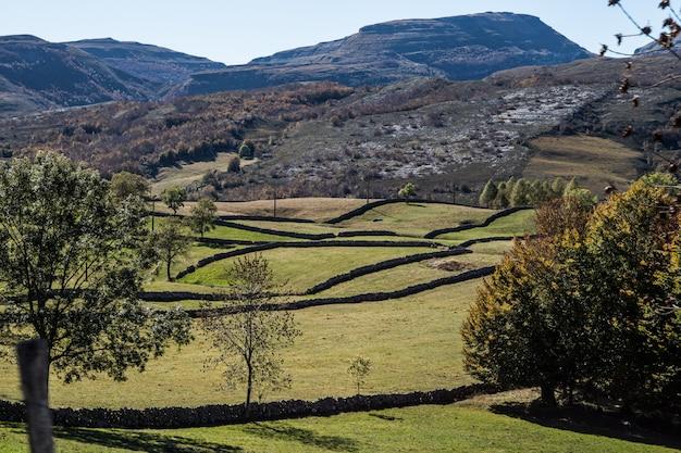 Krajobraz gór z działkami oddzielonymi kamiennymi murami