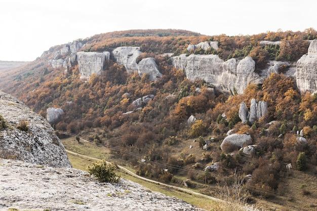 Krajobraz gór z zieloną roślinnością