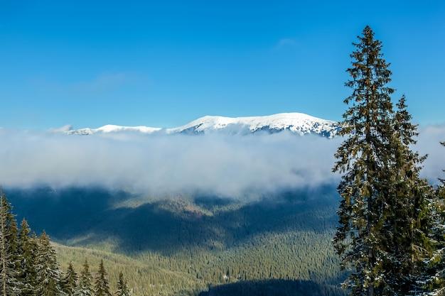Krajobraz górski. górski krajobraz i mgła nad szczytami górskimi ze świeżym śniegiem w karpatach na ukrainie.
