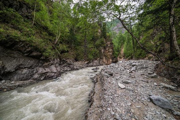 Krajobraz górski las rzeka. lasowa rzeka w górach.