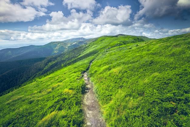 Krajobraz górski lato