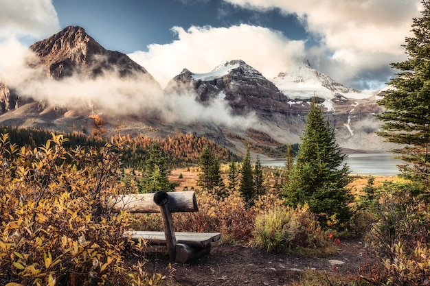 Krajobraz góry assiniboine na jeziorze magog i drewniane krzesło w jesiennym lesie w parku prowincjonalnym, bc, kanada